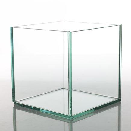 Glass Box - 10in