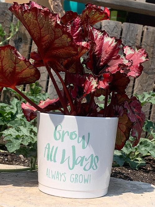 Cache Pot Grow All Ways Always Grow