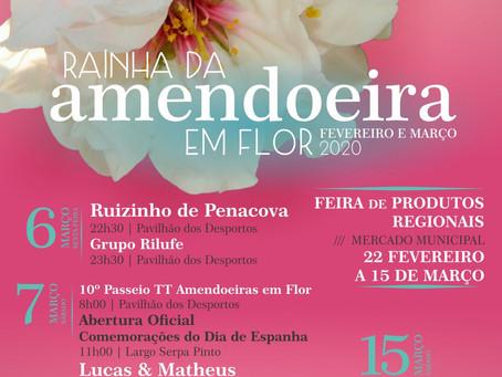 Figueira de Castelo Rodrigo é Rainha da Amendoeira em Flor