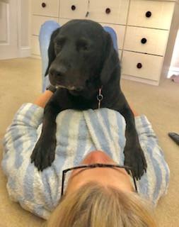 Cat - Happiest Hound � Owner - Victoria Clark � Dog - Harry.jpg