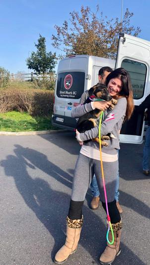 Cat - Pupstar � Owner - Joanna Harrison � Dog - Melin.jpg