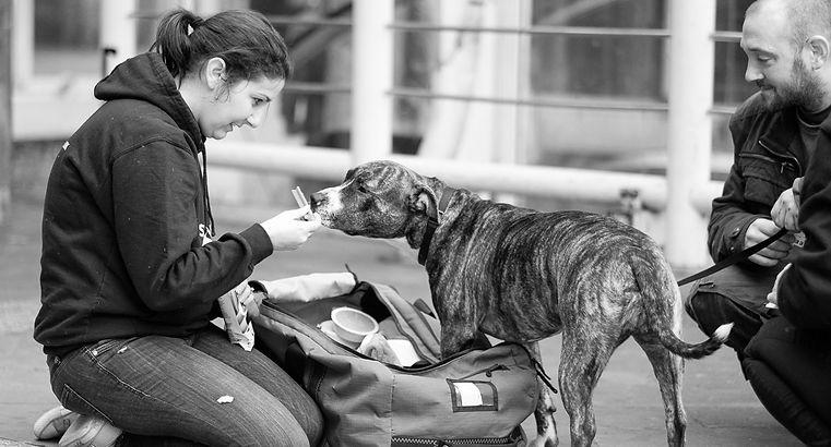 Street-vet-October-01-2017-55-of-160-2-c