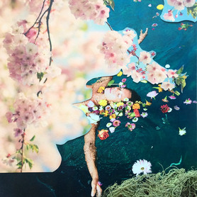 """""""Les fleurs du lac"""""""