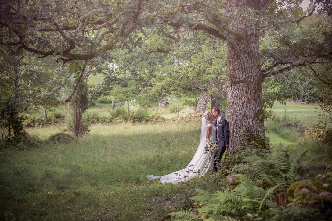 bröllop hudene