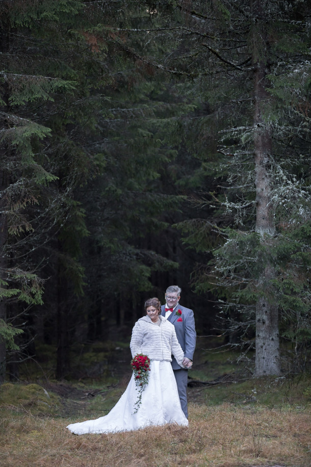 Bröllop ljur