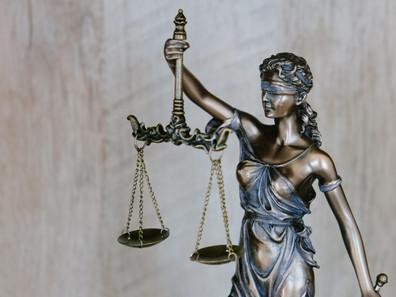 #PROJECTPLANETTALKS: Omnibus Law: Apakah Mengancam Lingkungan Kita? Bersama dengan Syarifah Reihana