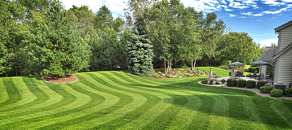 Professional lawn care service | LawnProTN Farragut