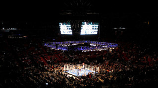 Freelance: Tips For Successful Live Betting Boxing Wagers