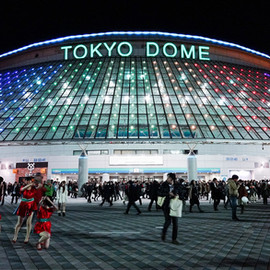 With Tokyo Olympics Postponed, 2021 Marks Big Year for Combat Sports