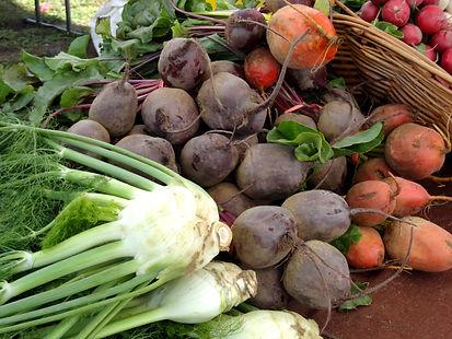 An array of fresh vegetables