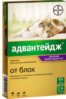 Капли на холку Адвантейдж для кошек весом более 4 кг.