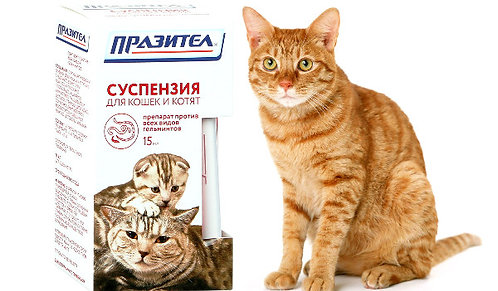 Празител суспензия для кошек и котят 15мл
