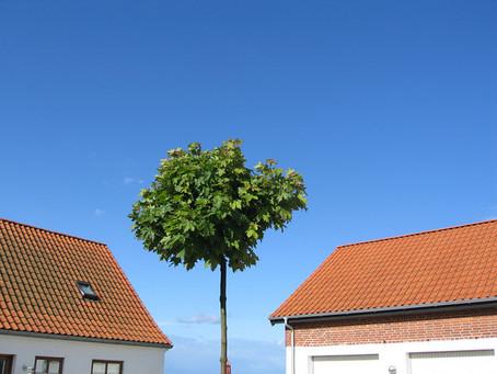 Beautiful Danish scenery