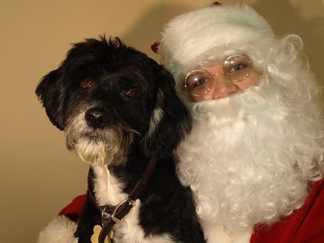 Why not visit Santa!