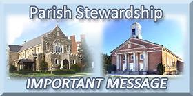 stewardship button.jpg