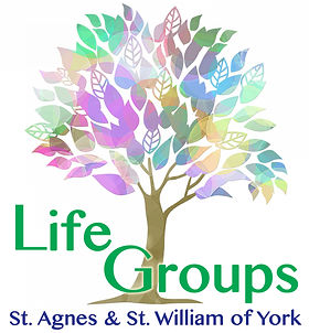 Life groups logo - color.jpg