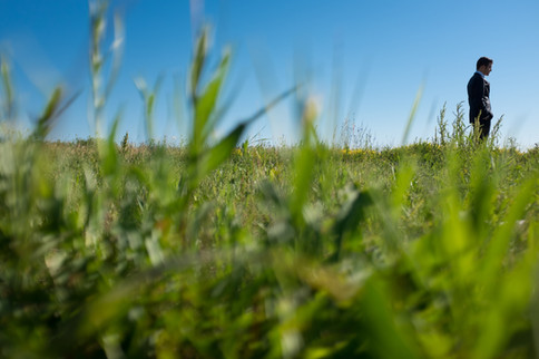 Top wedding photographers Little Blue Lemon captures groom waiting for the first look in tall green grass