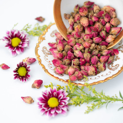 Rose hips for artisan tea by Bodhi Tree health clinic