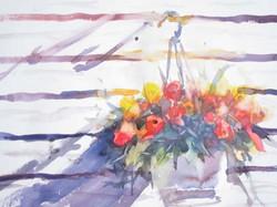 Hanging-Flowers.jpg