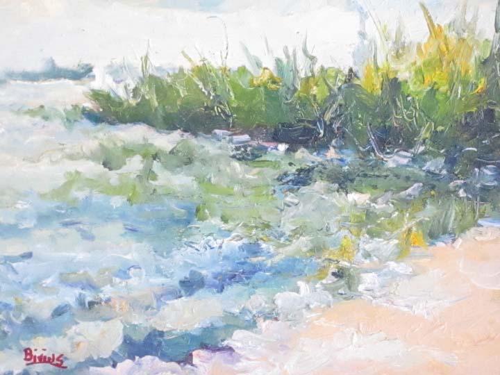 Rough-Beach-Maumee-Bay-Lake-Erie.jpg