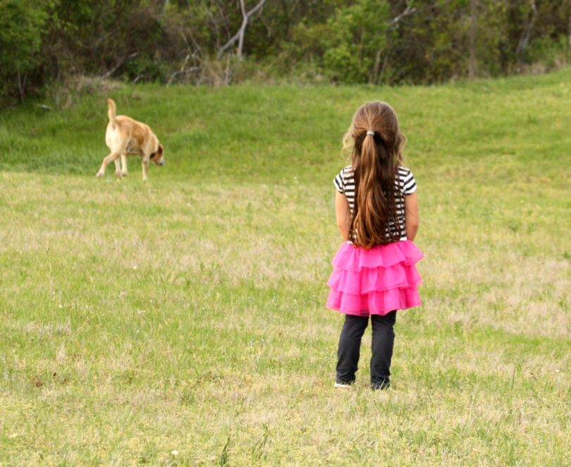 dog and girl in field.PNG