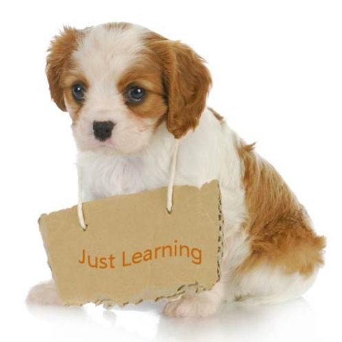 Puppy Class - £75