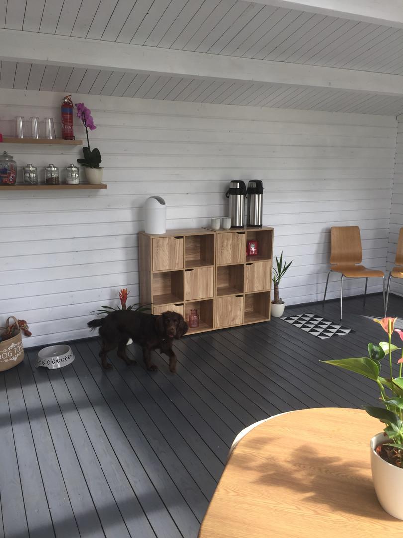 doghouse 5.JPG