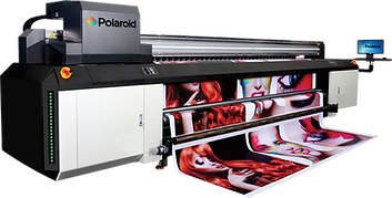 Polaroid Nova Ingles-2.png
