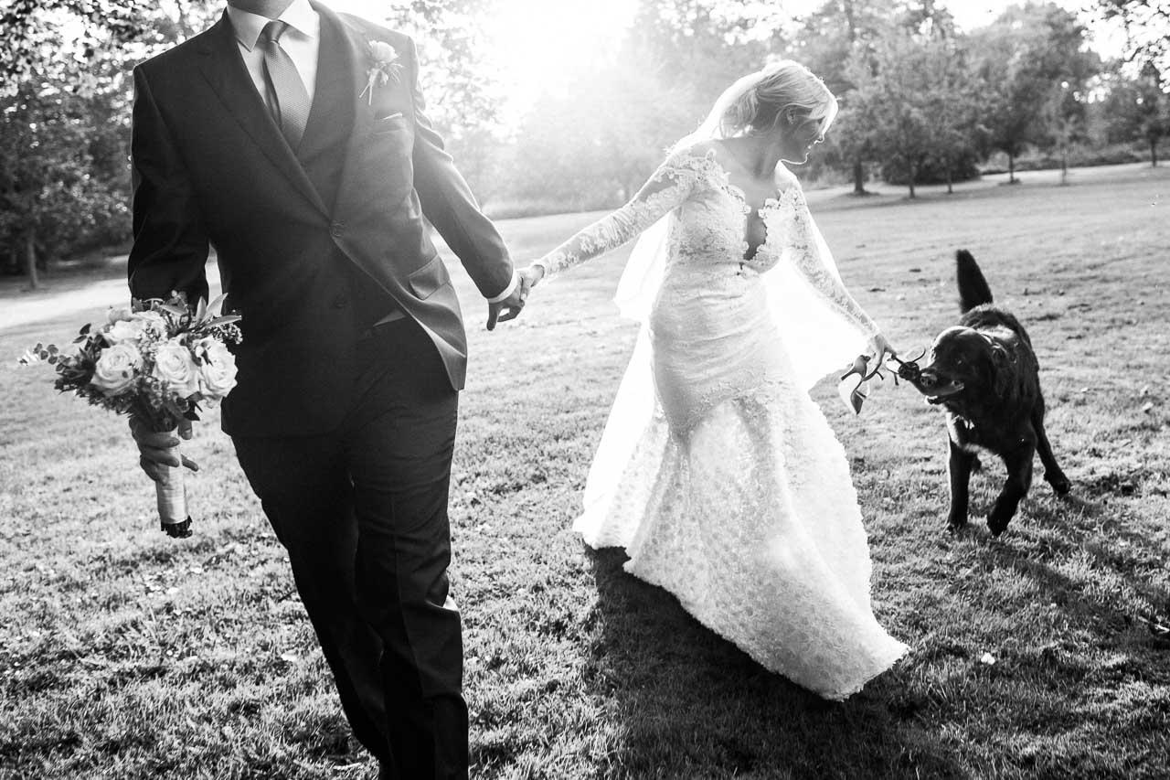 ~ Weddingdog ~