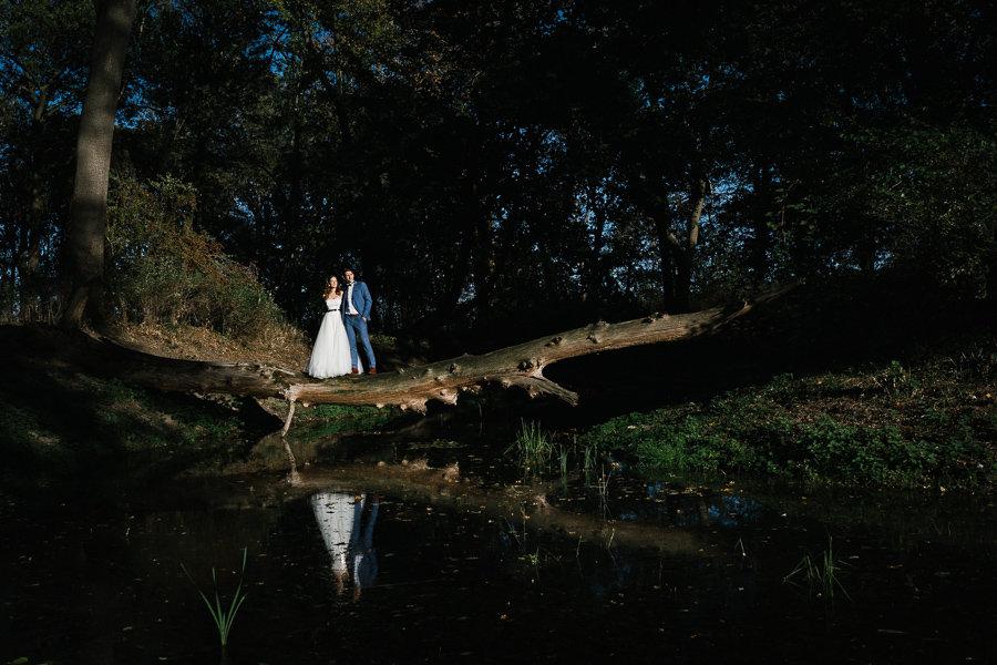Hochzeitspaar auf einem Baum beim Paarshooting