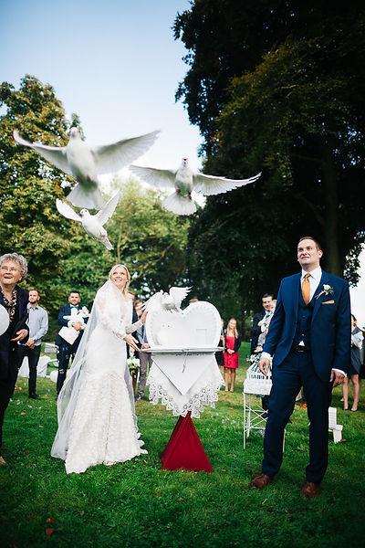 Tauben werden freigelassen