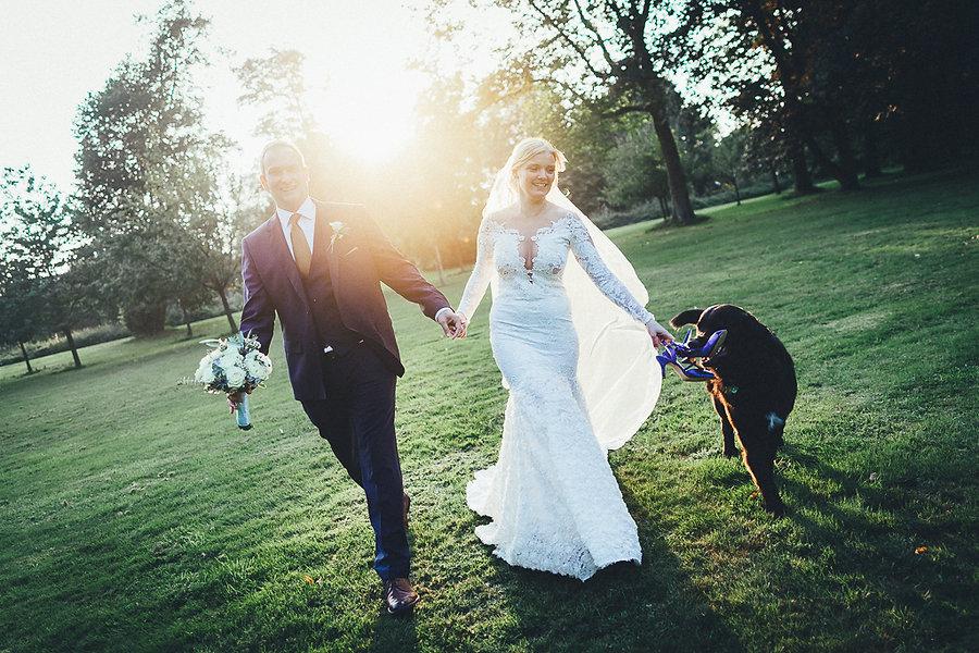 Hund frisst Brautschuh
