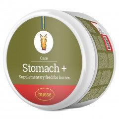 Stomach +