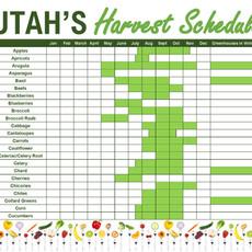 Utah Harvest Schedule