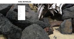 karl reynolds iphone phots main 2.png