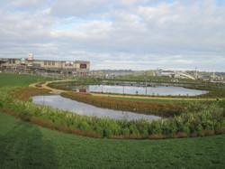 bge landscape projects