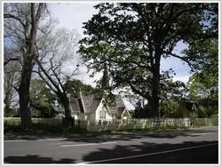 Holy Trinity Church with oak trees
