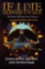 IIDBIWv1 front cover.jpg