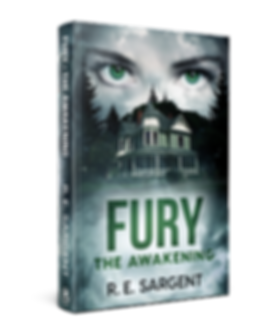 Fury the Awakening_Hardcover.png