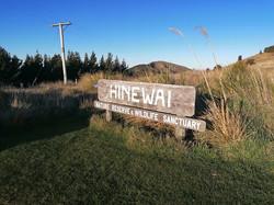 Hinewai