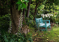 Relax in the Paua Bay Farmstay garden