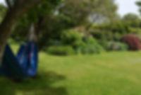 Paua Bay Farmstay Garden