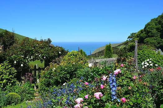 Beautiful Paua Bay from the Paua Bay Farmstay garden