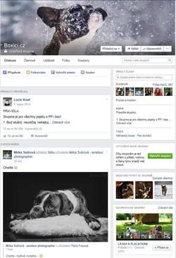 FB Boxici.cz