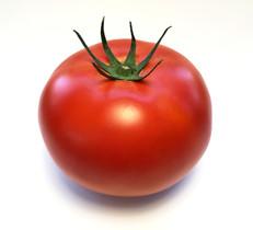 Tomato Web 2017_edited.jpg