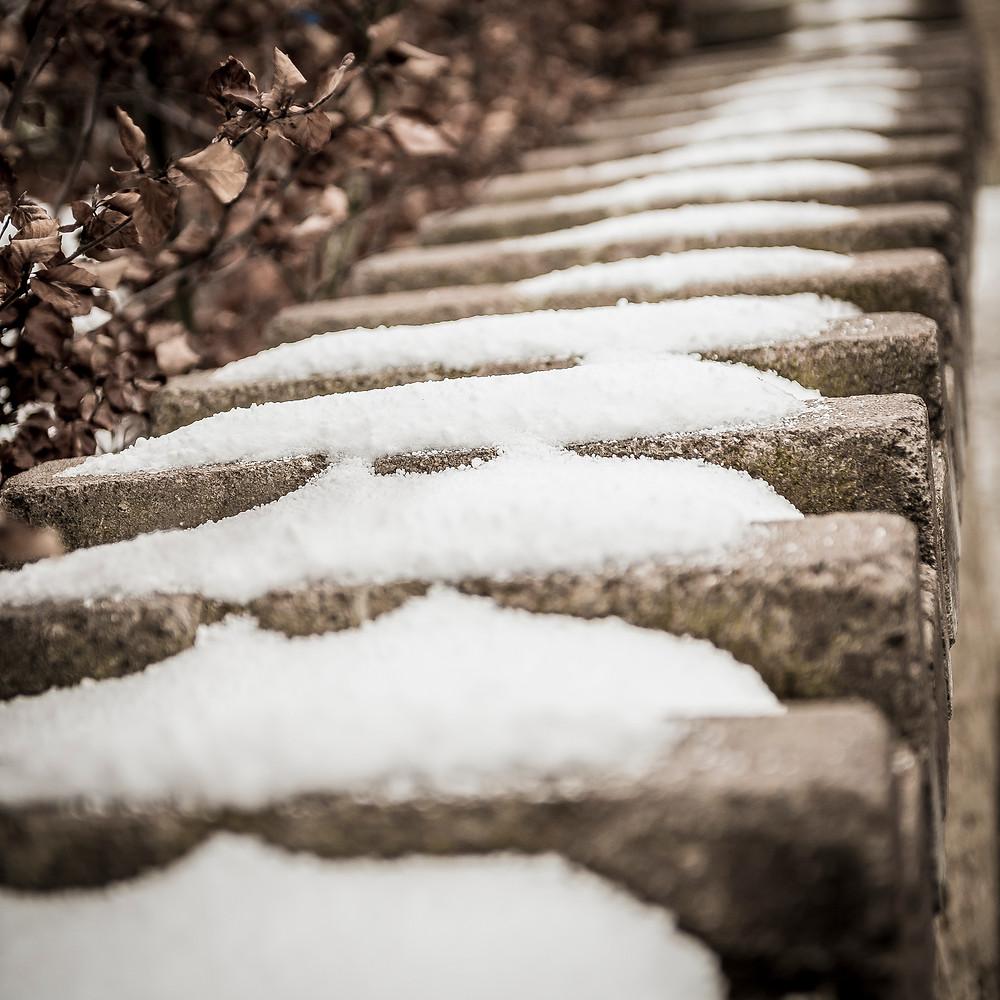 snow-lo-res-4