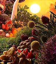 Jaime Travezán y David Tortora, serie 'Garden of Earthly Delights'