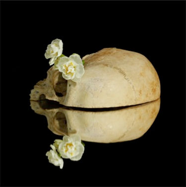 Xurxo Gómez-Chao, 'Narciso enamorado II'