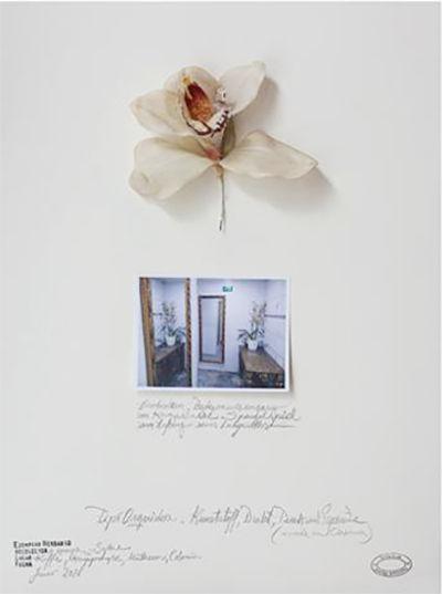 Obra de Alberto Baraya