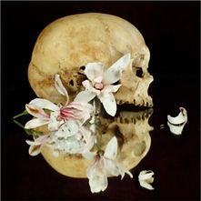 Xurxo Gómez-Chao, 'Still Life'